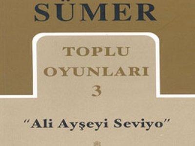 Ali Ayşe'yi Seviyor - Kitap Eleştiri